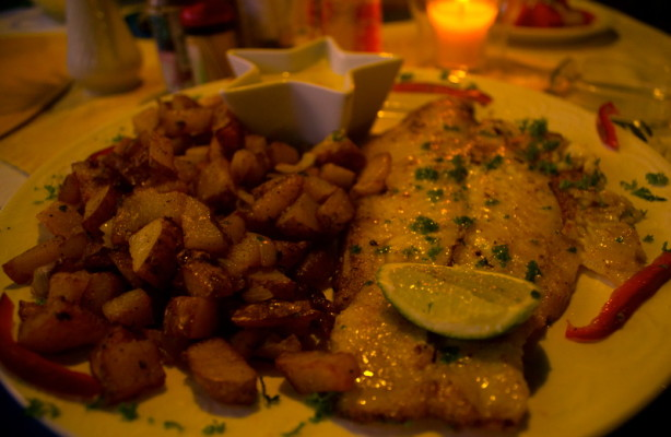 sea bass, fish, dinner, delicious, yum, lime