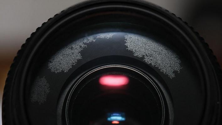 mold, camera, lens, ahhh