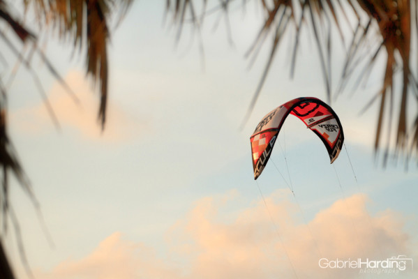 red kite, kiteboarding, palms, tropics, clouds, blue, pink,