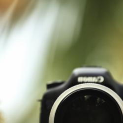 canon, 70-300, lens, L series, canon lens, http://wetravelandblog.com