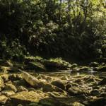 river, tour, dominican Republic, adventure