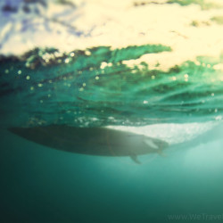 under wave, instinct, board trail, surf, surfing, trust your instinct, shimmer, shine, out of the abyss