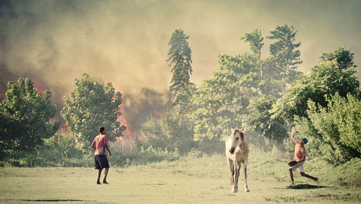 horse, fire, baseball, dominican republic