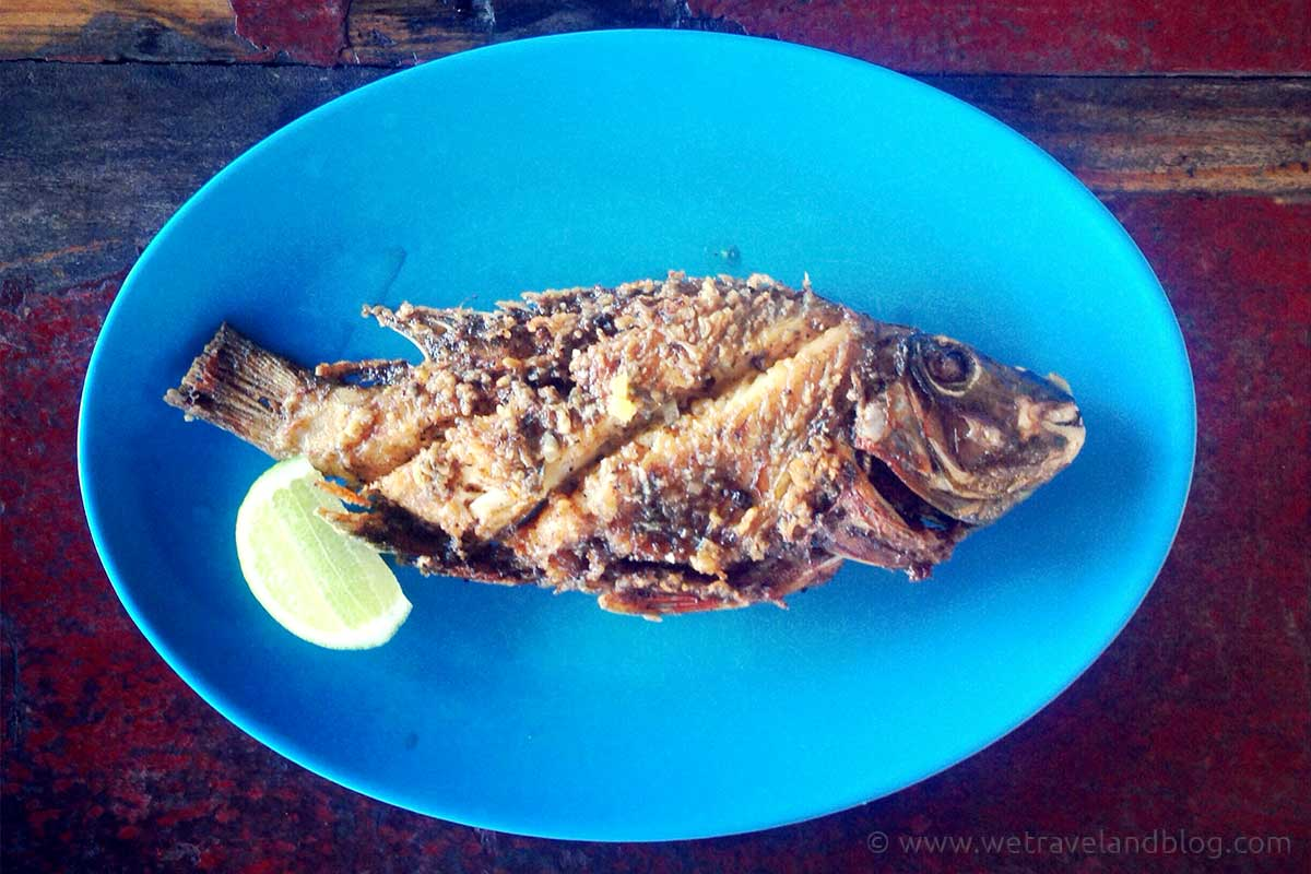 typical dominican food, fish, blue, typical, dominican republic, criolla, http://wetravelandblog.com
