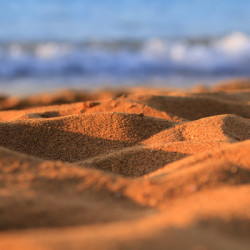sand, sandy, beach, ocean, sand dunes