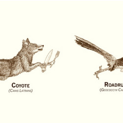 real life cartoons, wile e coyote, roadrunner, dinner, chasing dinner, looney tunes, http://wetravelandblog.comhttp://www.threadless.com/product/3583/Endangerous_Species?clickid=QpERwWwtN1ck236W90WFCQQbUkTw%3AlzbU1uh3s0&utm_campaign=59129&utm_medium=affiliate&utm_source=ImpactRadius