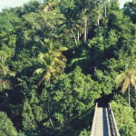 bridges-of-samana-9