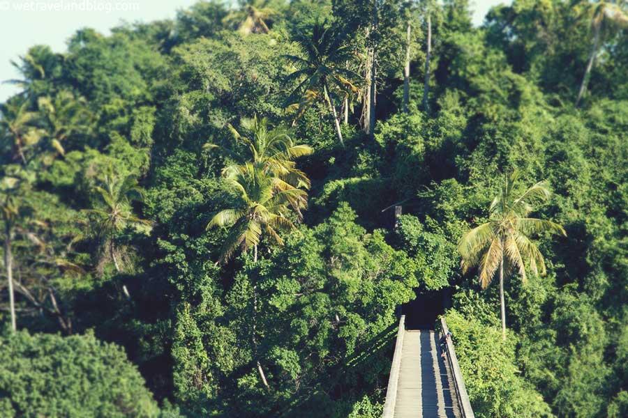 bridges-of-samana-9