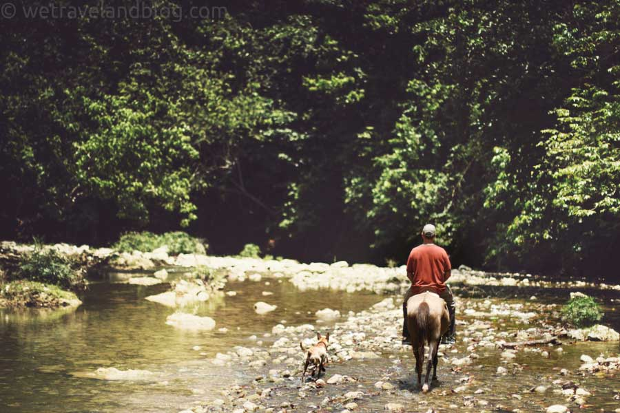 horse and dog, horseback, jungle, river, river rocks, dominican republic, http://wetravelandblog.com