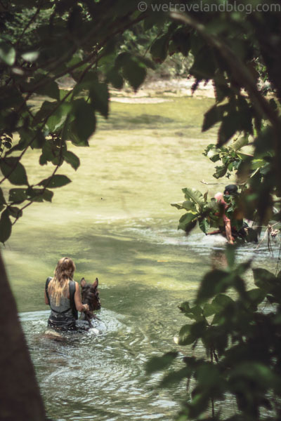 river, horse, swimming, cowgirl, dominican republic, lush, http://wetravelandblog.com