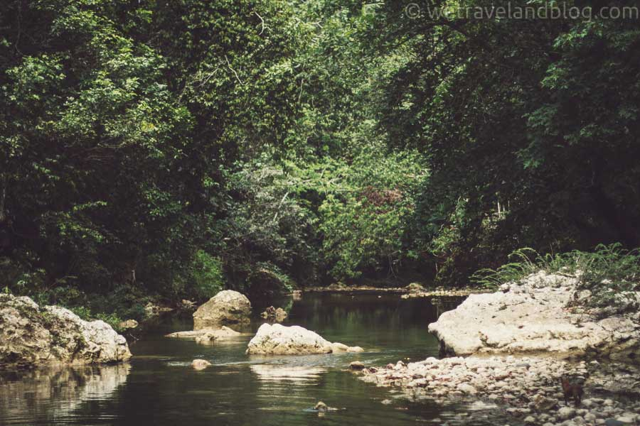 river, gorgeous, dominican republic, lush, jungle, heaven, garden of eden, http://wetravelandblog.com