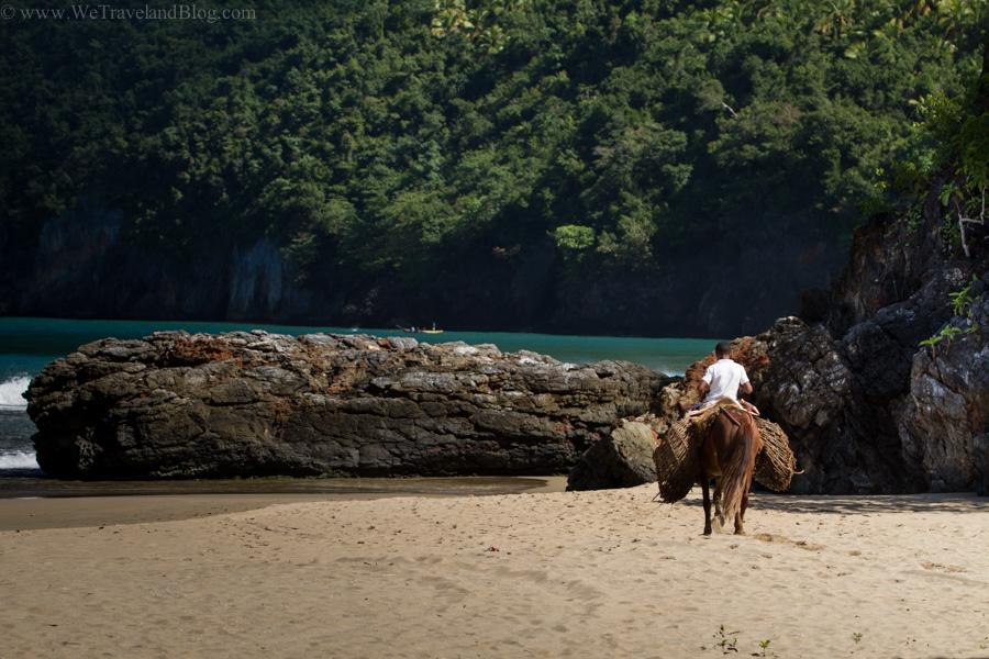 donkey, dominican republic, beach side, ocean, beach, transport, http://wtravelandblog.com