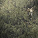 aguas blancas, dominican republic, waterfall, pine, forrest, landscape, landscape photography, http://wetravelandblog.com