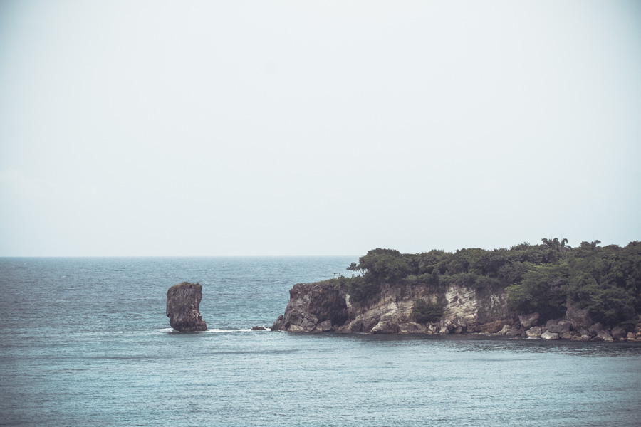 Preciousa Landscape Small-1