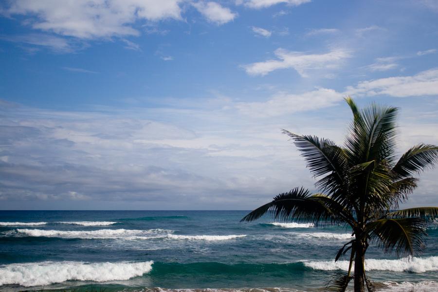 beaches-1