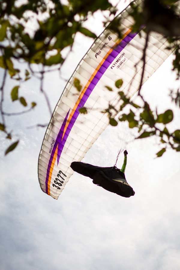 paragliding, flying tony, white, trees, leaves, framed, flying, dominican republic, http://wetravelandblog.com