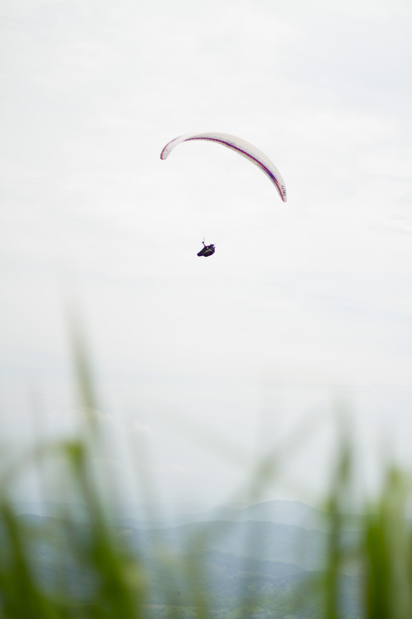 paragliding, parachute, grass, dominican republic, landscape, flying