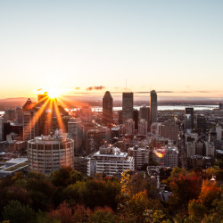 mont royal, montreal, canada, sunrise