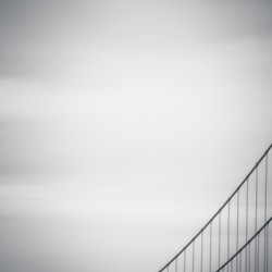 golden gate, bridge, abstract, cables, black and white