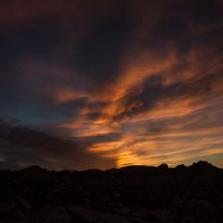 sunset, joshua tree, national park, usa, california, nature, landscape