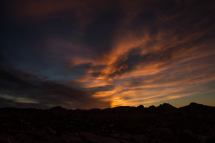 sunset, joshua tree, national park, usa, california, nature, landscape