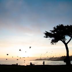 lovers point, sunrise, landscape, california coast