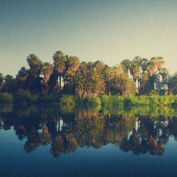 Oasis, Mirage, water, baja, desert, sound, soundscape, escape, travel, podcast, sunrise, birds, http://wetravelandblog.com