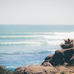 san juanico, scorpion bay, bay, swell lines, beautiful, cactus, baja, baja california, http://wetraveladnblog.com