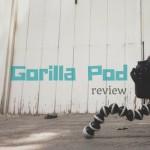 gorilla-1
